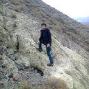 Фото dino