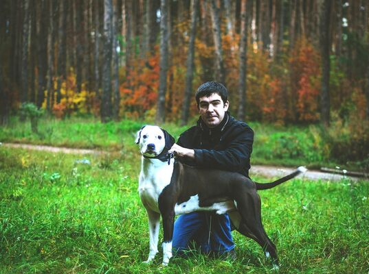 Фото мужчины иван, Воронеж, Россия, 31